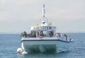 Serenity motor vessel at Farne Islands