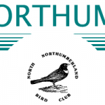 North Northumberland Bird Club @ Bamburgh Pavilion