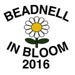 beadnell-in-bloom
